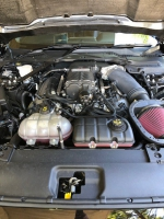 2016 Ford Mustang Gt 8cyl 5.0L manual