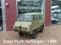 soldsteyrpuchhaflinger_1966